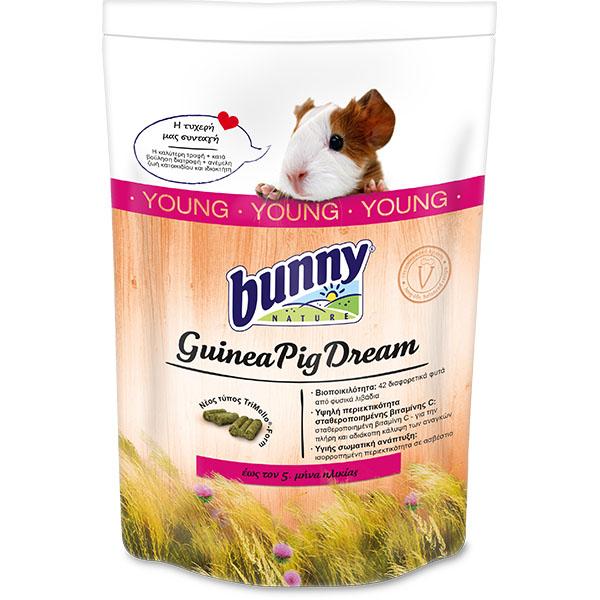 Bunny Guinea Pig Dream Young